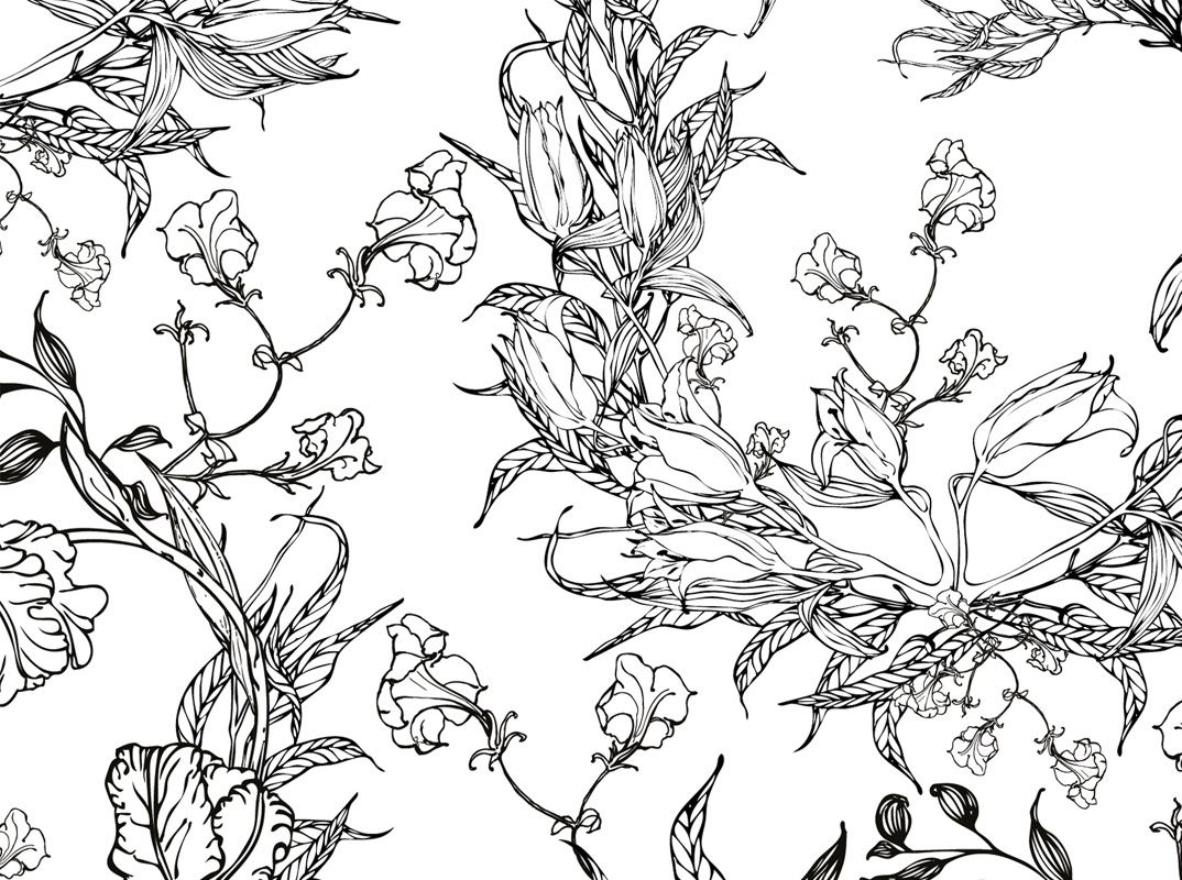 colouring pages floral motifs